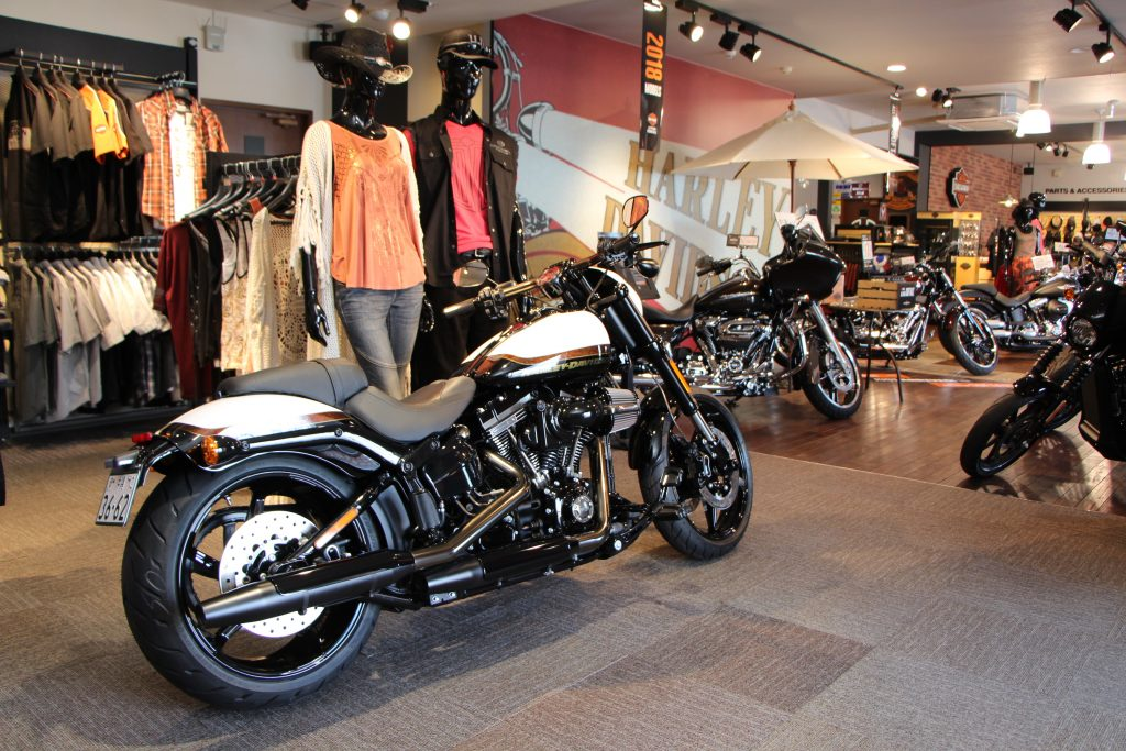 Motorcycle clothing for daily wear Harley-Davidson Okinawa (Oyama, Ginowan City)